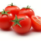 Tips Membekukan Tomat Agar Tahan Lama